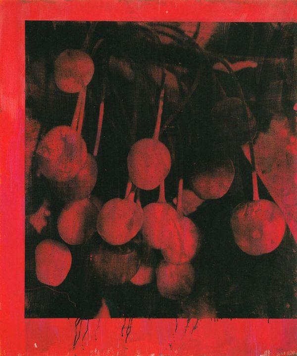 Kirsebær 1. Ole Henrik Hagen