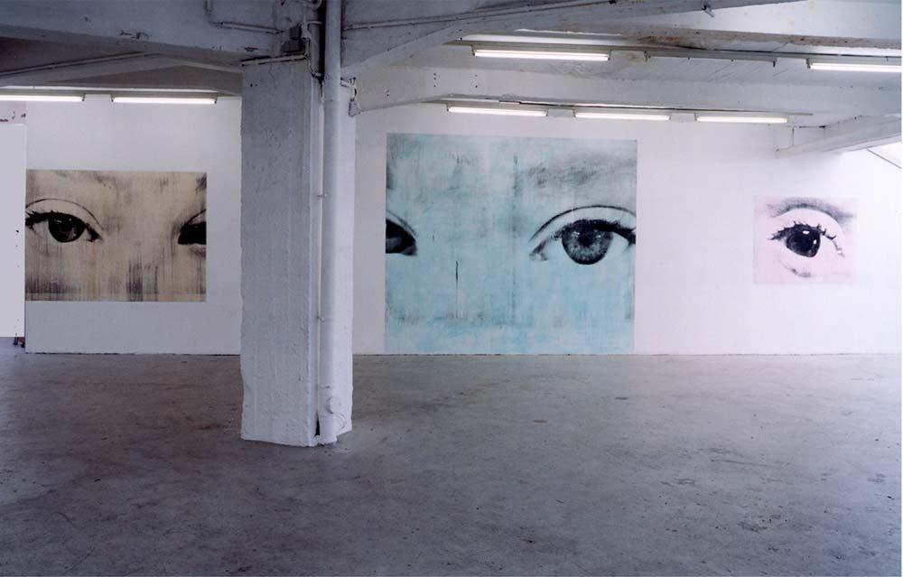 Iris Access. Ole Henrik Hagen, Künstelerhaus Hamburg, 2001